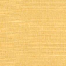 Newport - Golden
